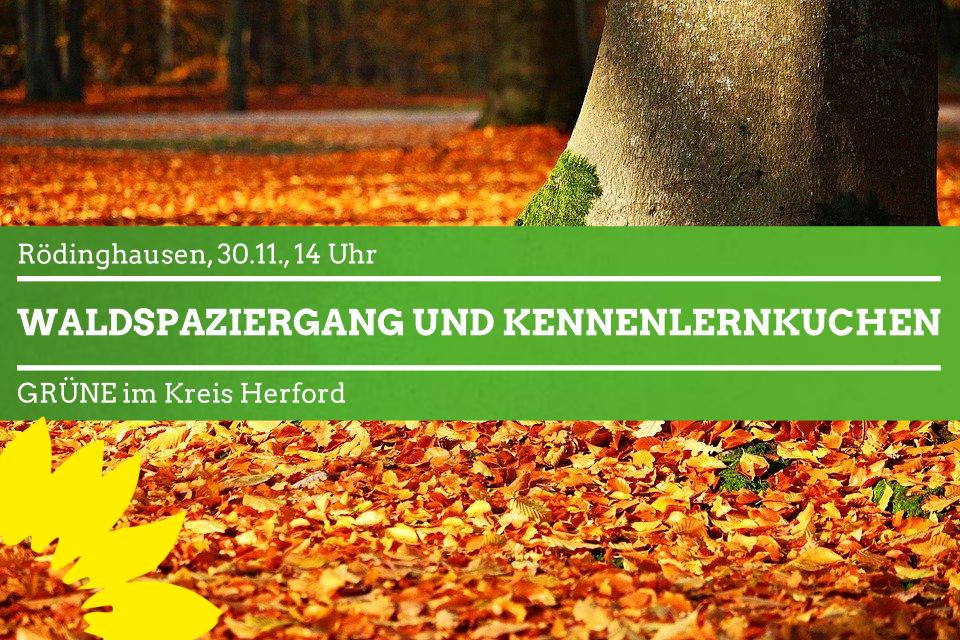 Rödinghausen: Waldspaziergang und Kennenlernkuchen